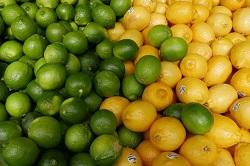 かんきつ系や梅にクエン酸は含まれます